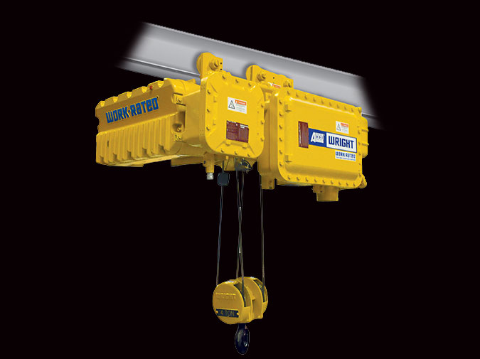 Work Rated Hoist